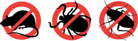 Пест Репеллер - отпугиватель насекомых и грызунов - обзор и отзывы покупателей